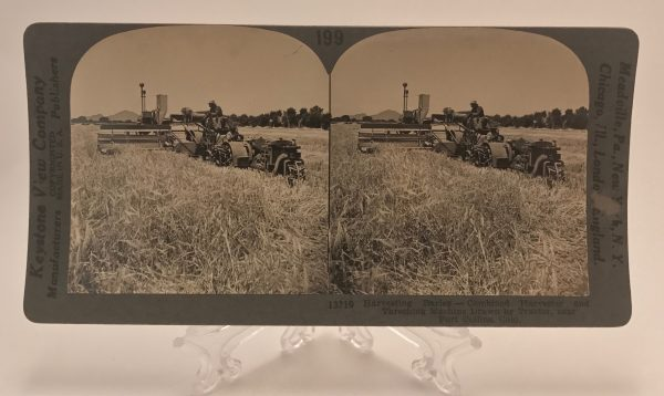 Harvesting Barley with Combined Harvester and Threshing Machine Drawn by Tractor Near Fort Collins Colorado Stereoview
