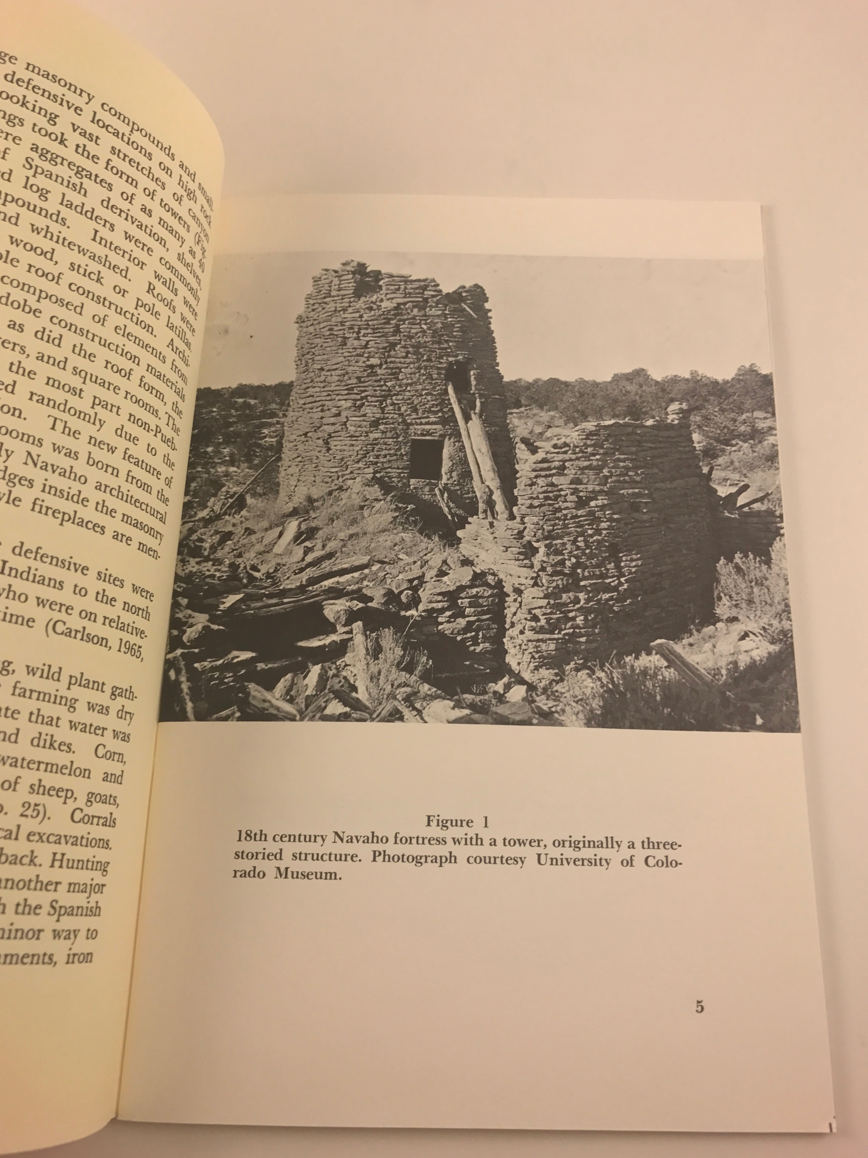 Early navaho rock paintings and carvings by polly schaafsma 1966