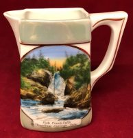 The Jonroth Studios Germany Souvenir Ceramic Creamer Steamboat Springs Colorado (3)